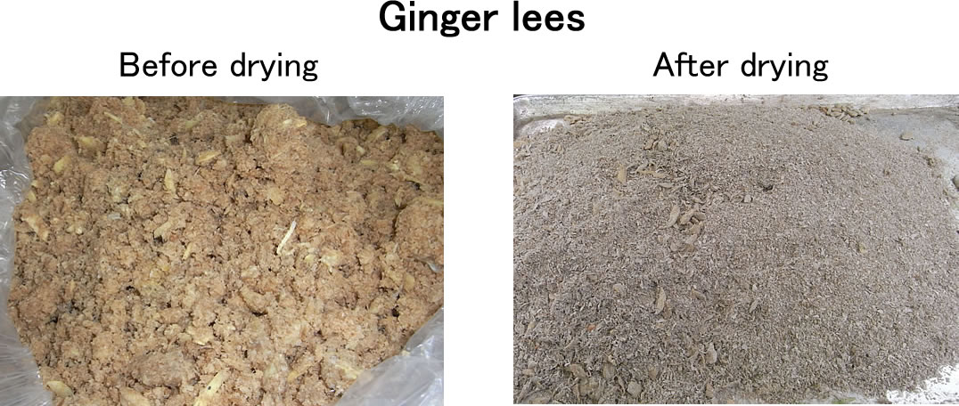 ginger lees drying waste dryer recycling dryer