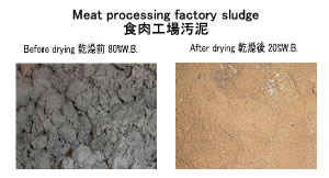 meat processing sludge sludge drying sludge dryer kenki dryer 23/3/2020