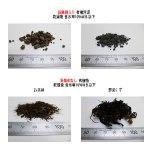 有機物と有機汚泥の乾燥の比較 kenki dryer 2017.10.31