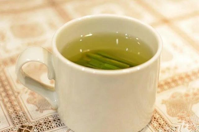 お家で香りを楽しむレモングラスの栽培における5つの育てるポイント