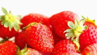 新種のイチゴ「きらぴ香」の知って得する5つの情報をご紹介!
