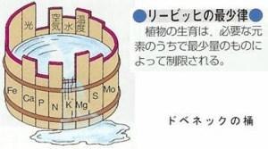 ドべネックの樽