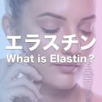 9a73932e0ab216cfafa36658c7c76b19 3 - エラスチンとは?20代後半から減少するエラスチンのケア方法まとめ!