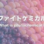 ファイトケミカルって何?主要な成分を脂溶性・水溶性ごとに表にまとめてみた
