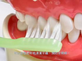 Tampopo 專業口腔護理必備 牙縫刷 – Inter Detal Brush