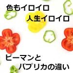 ピーマンに緑黄赤がある理由とそれぞれの栄養は?パプリカとの違いも判明