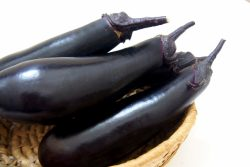紫の野菜 ナス