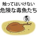 毒を持っている魚6種&特に危険な生き物リスト!釣り・海水浴では要注意!