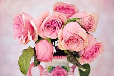 roses-3194057_640