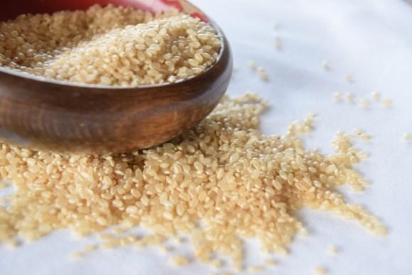 玄米や白米に付く虫にはどんな種類がある?予防のための工夫