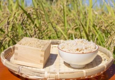 玄米は炒る方が良いと聞いた!すぐに炊くよりなぜ良いのか?