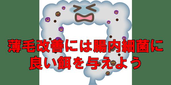 腸内細菌と薄毛