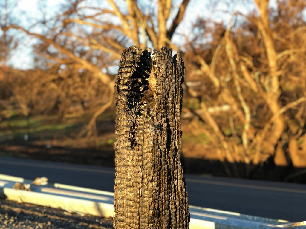 Burned Guard Rail - Close Up