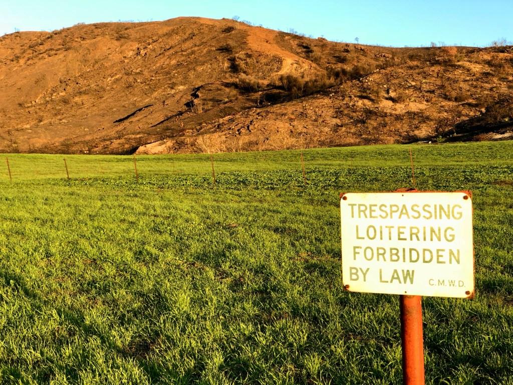 Trespassing Forbidden