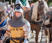 Knight in traditional garb with horse in background