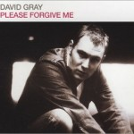 David Gray - Please Forgive Me
