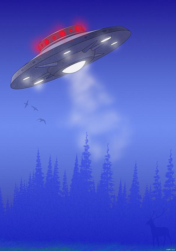 Sky Intruder