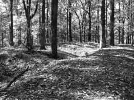 Confederate earthworks