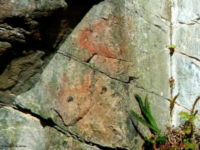 113 - Hotham Sound Pictographs