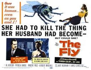 The Fly released