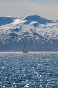 Segelbåt i Skjálfandi-bukten på Islands nordkust.
