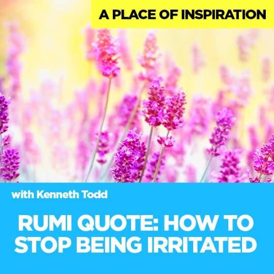 #24 RUMI QUOTE HOW TO STOP BEING IRRITATED