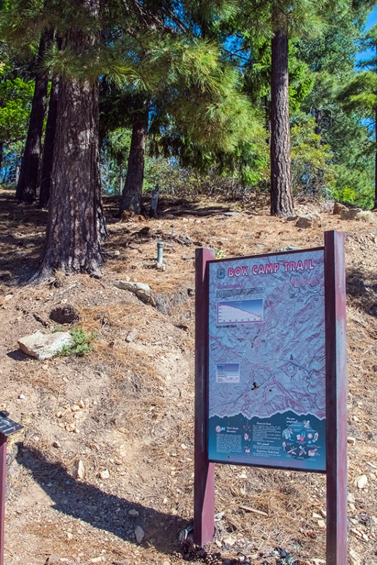 Box Camp Trail Hikers-1881 blog