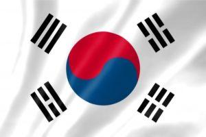 キムチ 韓国人