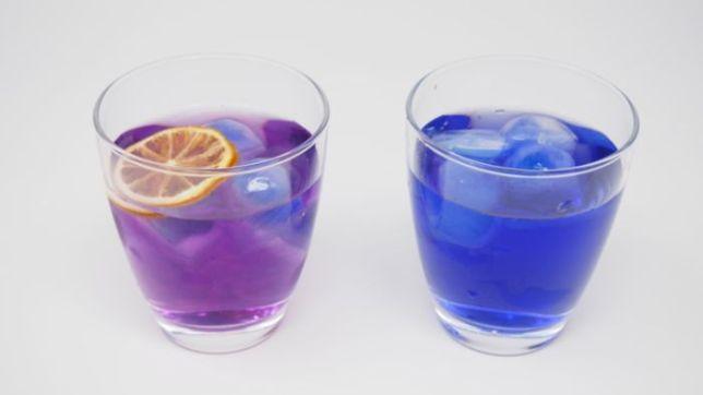 青色食べ物 マローブルー