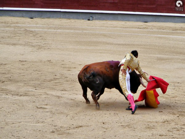 Bullfight Plaza De Toros Las Ventas - Madrid