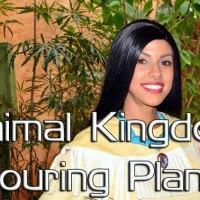 Animal Kingdom Touring Plans