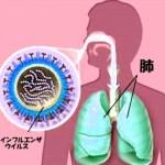 【インフルエンザで胸が苦しい、痛い】その症状の原因は心筋炎かも