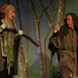 Into the Woods Witch and Mysterious Man