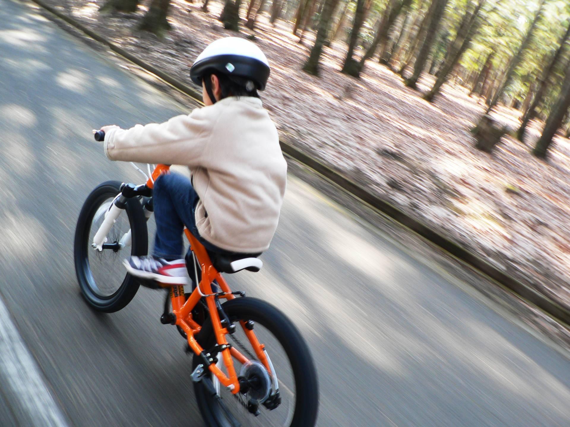au損保の自転車保険「自転車向け保険 Bycle」に入りました-Japan Nomad