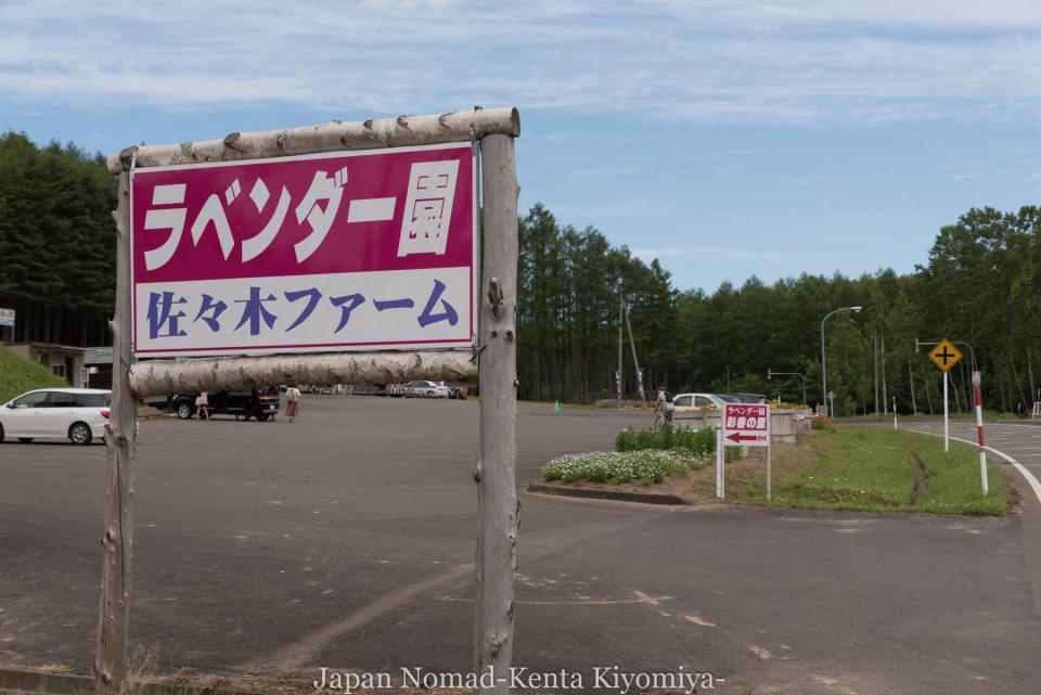自転車日本一周71日目(富良野ラベンダー)-Japan Nomad (9)