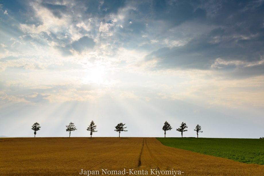 自転車日本一周95日目(メルヘンの丘)-Japan Nomad (44)