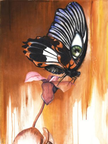 green-eye-butterfly-anthony-burks