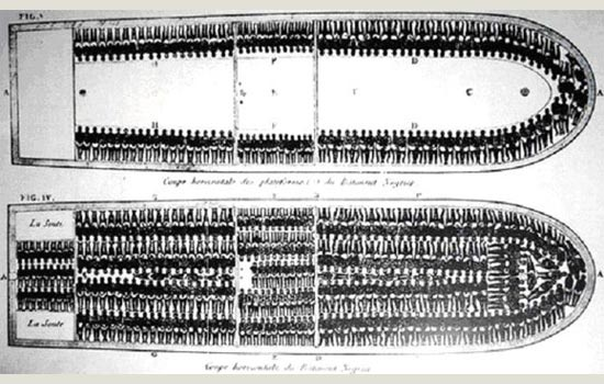 Brookes slave ship plan