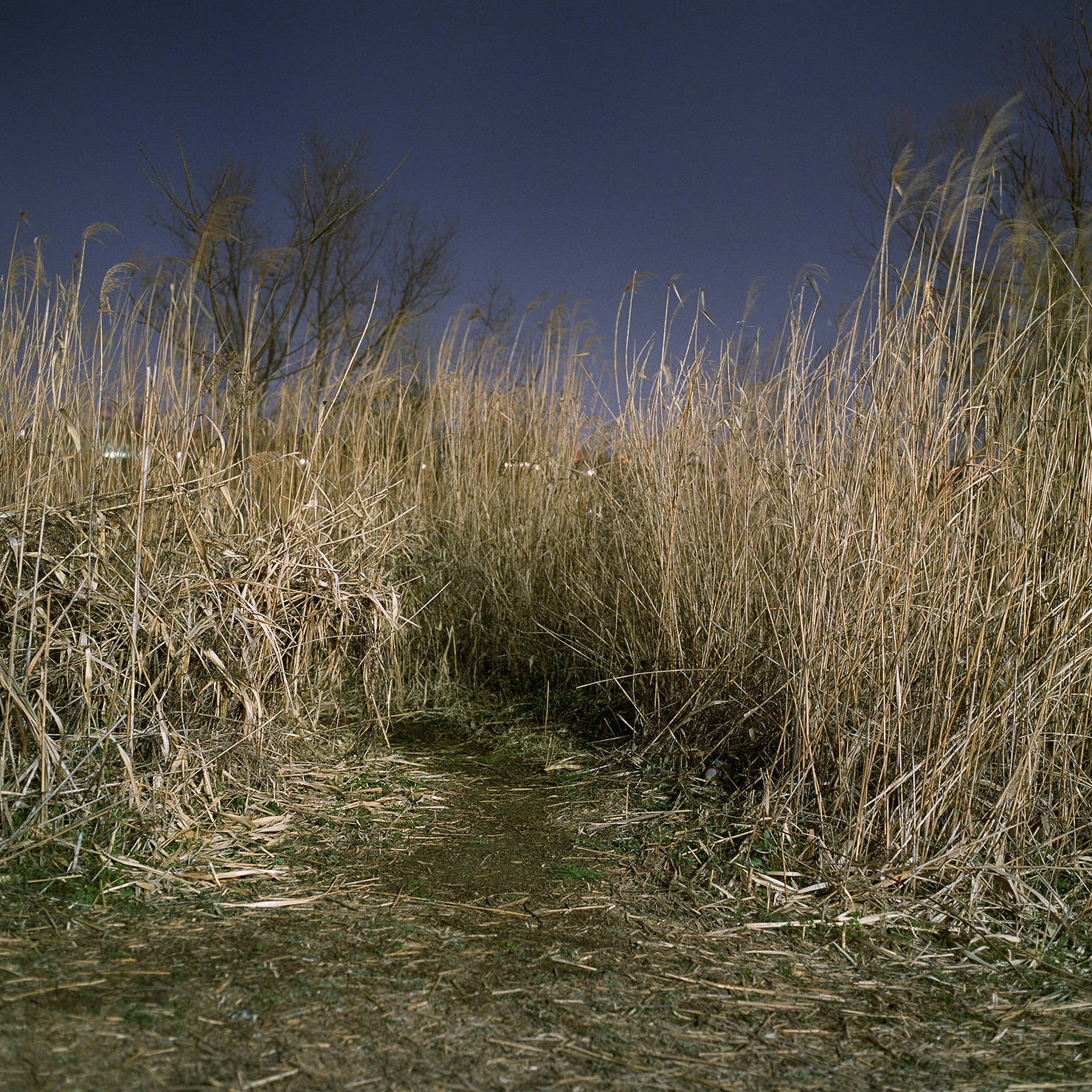 theriverbed_05