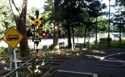 Suginami Children's Traffic Park - 6