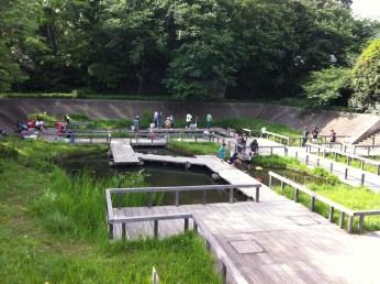 Children fishing in the Tamagawadai Park Tokyo in Ota-ku.