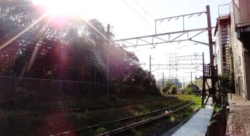 Showa station Tsurimi line grass on tracks
