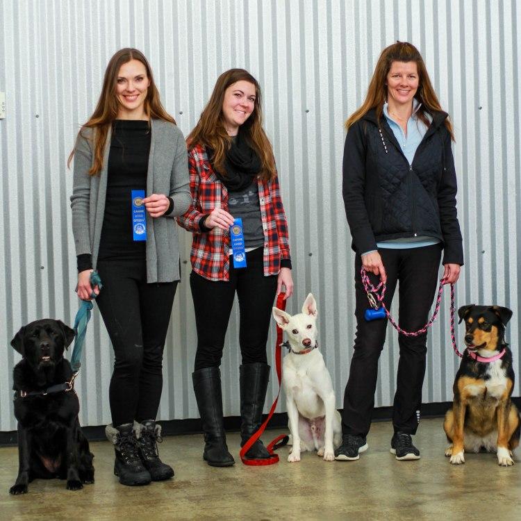 Union kentucky dog training