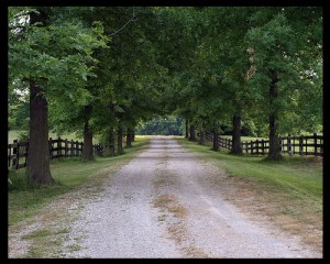 The Road that Led to Homeschool: Part 1
