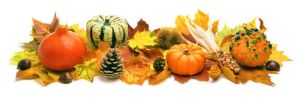 Harvest Festival ~ October 6th