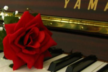 Lexy's Piano Bar Barbados