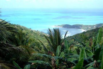 Tresure Island