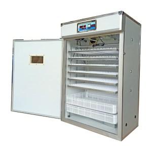 1232-eggs-incubator