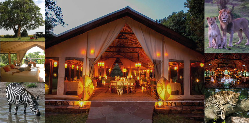 H&S Luxury Package Of The Week- Sekenani Camp 2 Nights/3 Days- Maasai Mara Package
