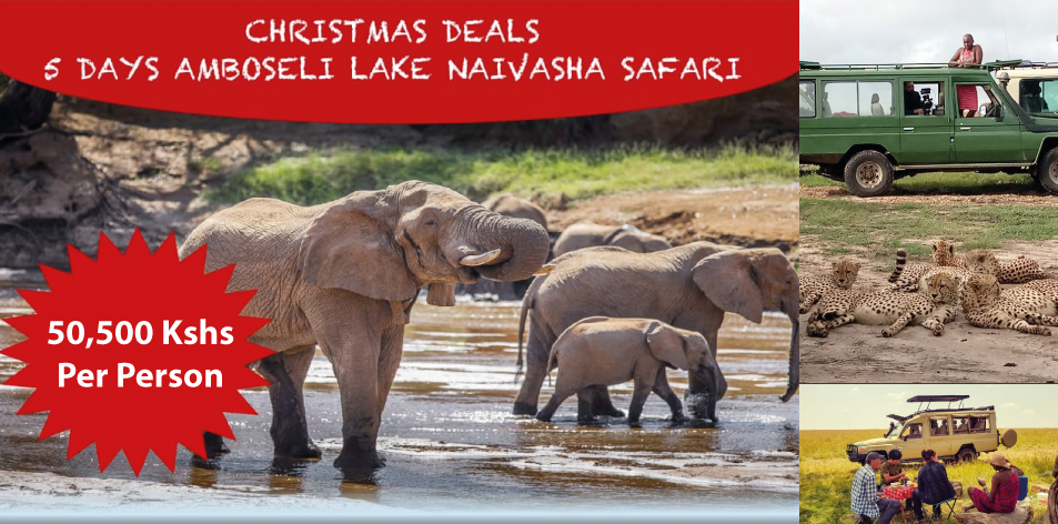 Amboseli, Naivasha & Nakuru Safari Package